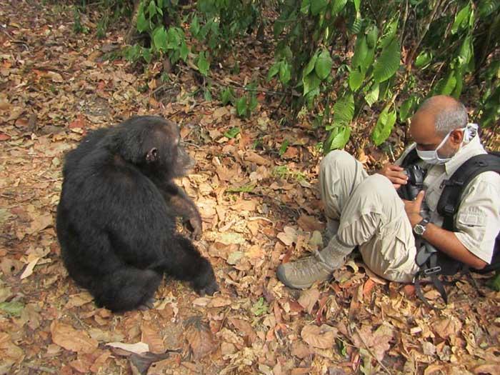 guatam shah wildlife conservation