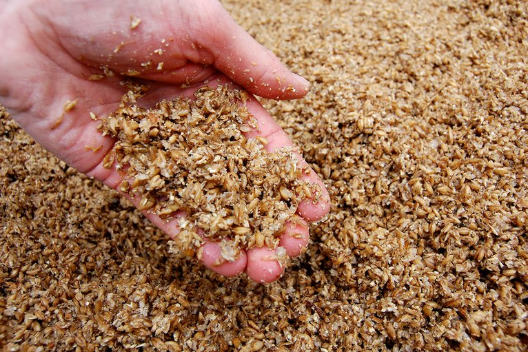 spent-brewers-grain
