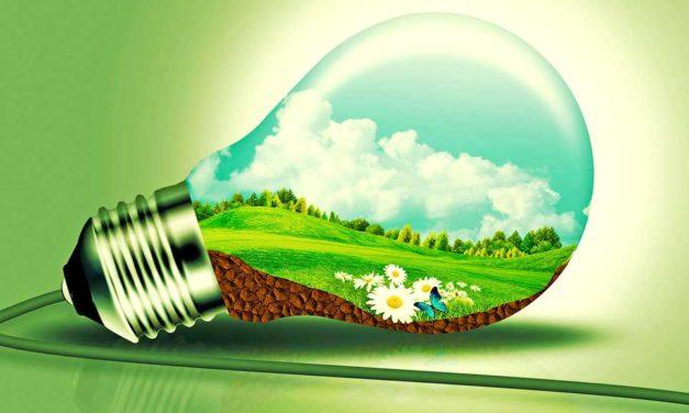 Sustainability as a Model for Environmental and Social Entrepreneurship