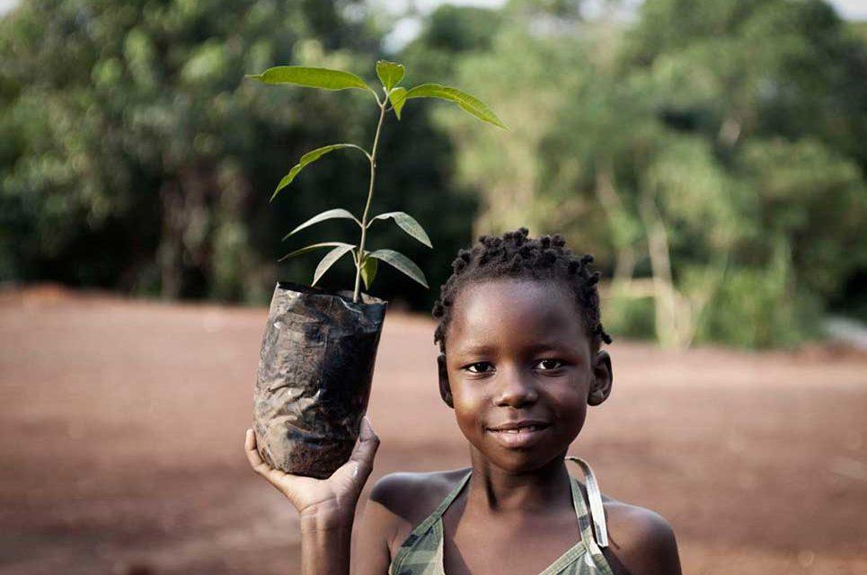 3 Social Entrepreneurs Blazing New Trails Toward Sustainability